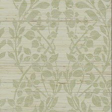 Silver Metallic/Green Grasscloth Wallcovering by York