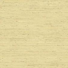 Beige/Soft Green/Brown Grasses Wallcovering by York