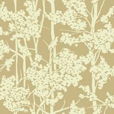 Gold/Cream Botanical Wallcovering by York