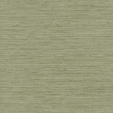 Pale Green/Taupe Grasses Wallcovering by York