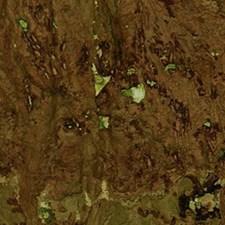 Jade Wallcovering by Innovations