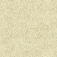 Pale Gold/Cream/Grey Damask Wallcovering by York