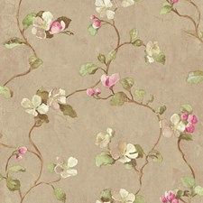 Taupe/Light and Medium Pink/White Floral Wallcovering by York
