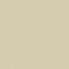 Beige Solids Wallcovering by York