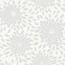 Ivory/Cream/Silver Frost Floral Medium Wallcovering by York
