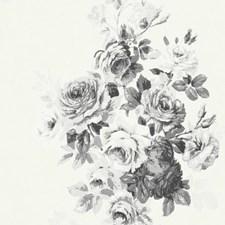 ME1534 Tea Rose by York
