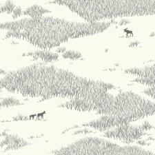 NR1505 Wild Tundra by York