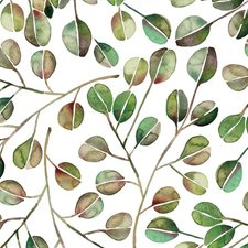 RMK11630WP Cat Coquillette Eucalyptus by York