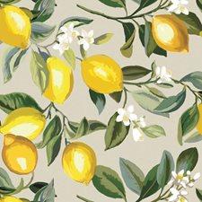 RMK11681WP Lemon Zest by York