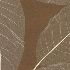 Brown/Beige Leaves Wallcovering by York