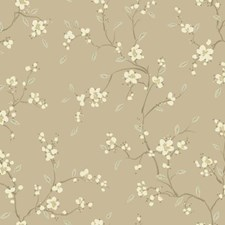 Light Taupe/Cream/Dark Taupe Floral Wallcovering by York