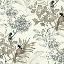 TL1927 Handpainted Songbird by York