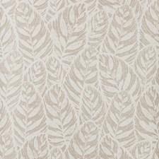 White/Beige Botanical Wallcovering by Kravet Wallpaper