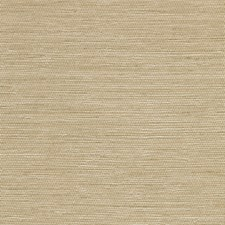 Gold/Yellow Solid Wallcovering by Kravet Wallpaper