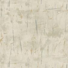 Silver/Grey/Bronze Modern Wallcovering by Kravet Wallpaper