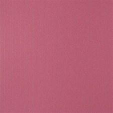 WAM7228 Argentina Pink by Winfield Thybony