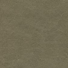 WB1017 Silver Shagreen Chocolate by Brewster