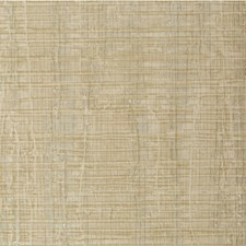 D'or Texture Wallcovering by Winfield Thybony