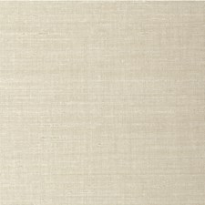 Sugarcane Solid Wallcovering by Winfield Thybony