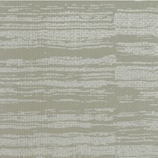Parrot Texture Wallcovering by Winfield Thybony