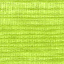 Kiwi Wallcovering by Scalamandre Wallpaper