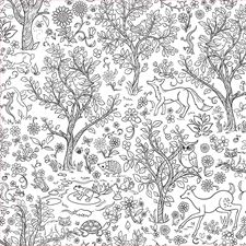 WPK2185 Wilderness Coloring Wall Decal by Brewster