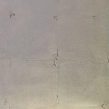 Silver Mandarin Wallcovering by Scalamandre Wallpaper